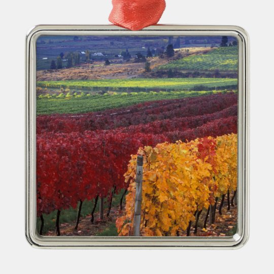 Intense red and yellow fall colors on Gehring Metal Ornament