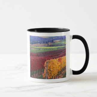 Intense red and yellow fall colors on Gehring Mug