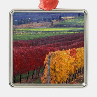 Intense red and yellow fall colors on Gehring Ornaments