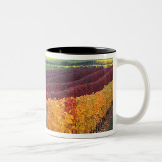 Intense red and yellow fall colors on Gehring Two-Tone Coffee Mug