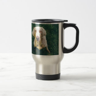 Intense Weimaraner Travel Mug