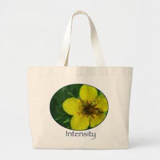 Intensity Bag