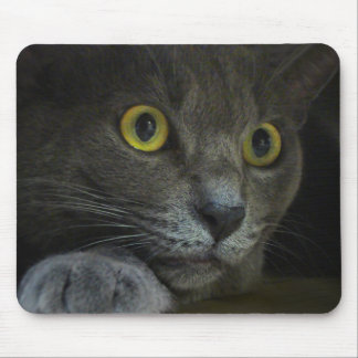 Intensity Mousepad