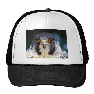 Intensity of the Falcon's Gaze Trucker Hat