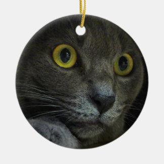 Intensity Ornament