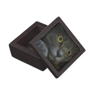 Intensity Premium Gift Box