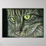Intenso - arte del gato posters