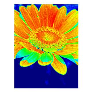 Intenso coloreado floral postales
