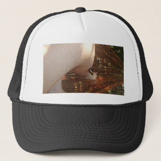 Interaction with butterfly trucker hat