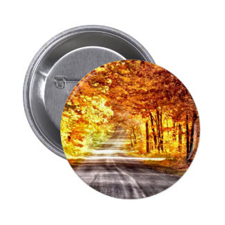 Interchange of Light and Colour Pinback Button