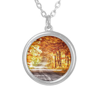 Interchange of Light and Colour Silver Plated Necklace