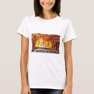 Interchange of Light and Colour T-Shirt