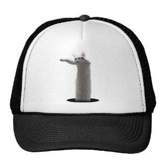 interdimensional LongCat Trucker Hat