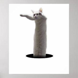 interdimensional LongCat Posters