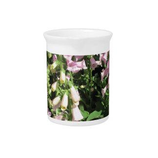 Interesante en rosa jarras para bebida