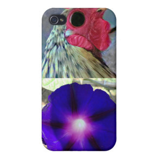 Interesing Cases For iPhone 4
