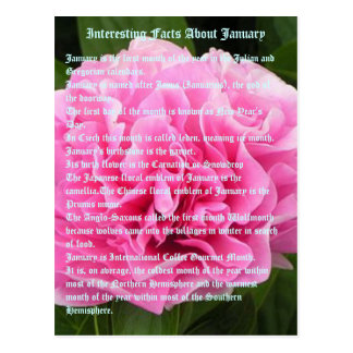 Interesting facts about January Postcard