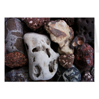 Interesting Rocks from Lake Michigan Shore Card