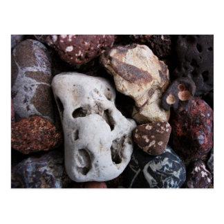 Interesting Rocks from Lake Michigan Shore Postcard