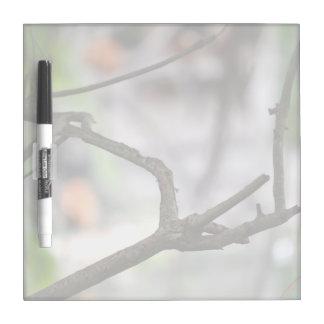 Interesting shaped random stick tree image dry erase board