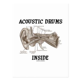 Interior acústico de los tambores anatomía del oí tarjeta postal
