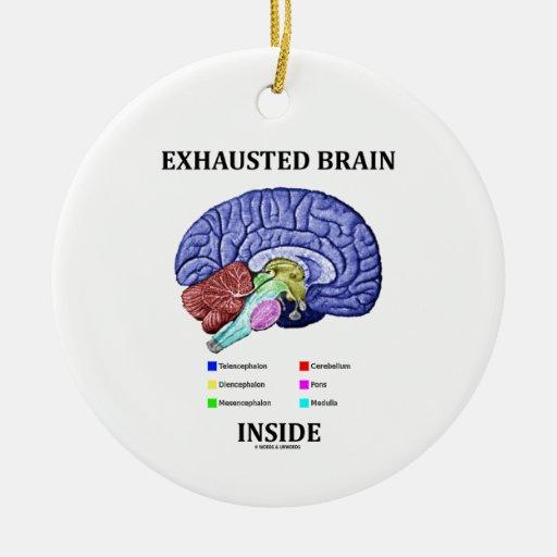 Interior agotado del cerebro (humor anatómico del adorno redondo de cerámica