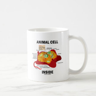 Interior animal de la célula (biología celular del taza