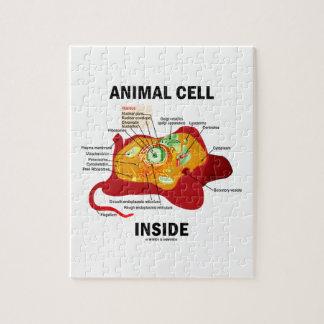 Interior animal de la célula (célula eucariótica rompecabeza con fotos