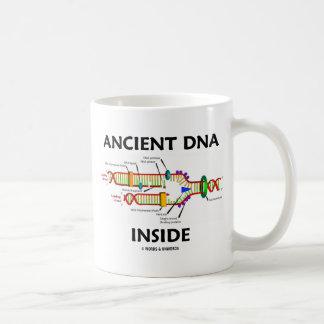 Interior antiguo de la DNA (humor de la réplica de Taza