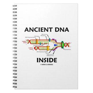 Interior antiguo de la DNA (réplica de la DNA) Spiral Notebook