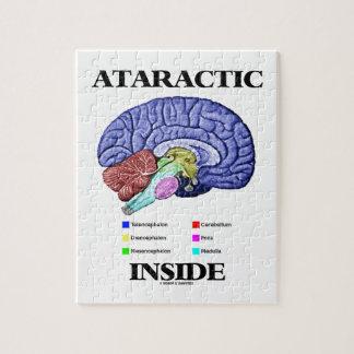 Interior ataráxico (humor de la anatomía del cereb rompecabeza con fotos
