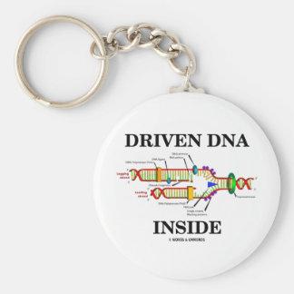Interior conducido de la DNA réplica de la DNA Llaveros