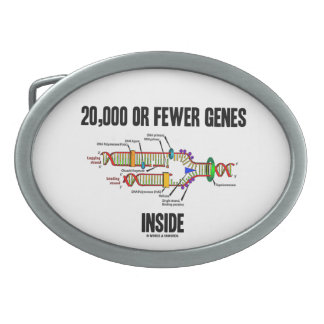 Interior de 20.000 o menos genes (réplica de la DN Hebillas Cinturon
