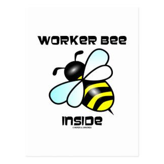 Interior de la abeja de trabajador (actitud de la  postales