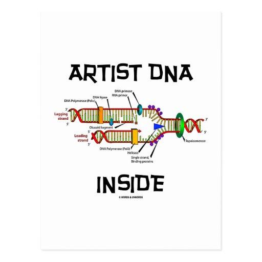 Interior de la DNA del artista (réplica de la DNA) Postales