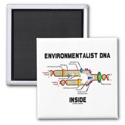 Interior de la DNA del ecologista (réplica de la D Imán De Frigorifico