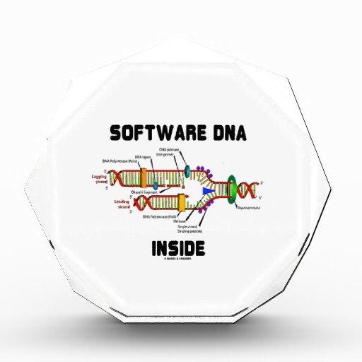 Interior de la DNA del software (réplica de la DNA