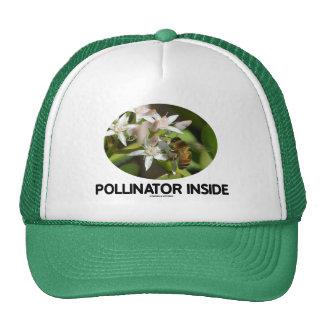 Interior de la donadora de polen (abeja en la flor gorras de camionero