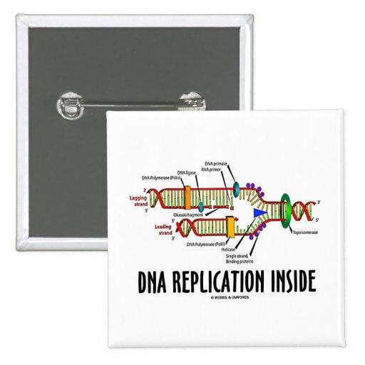 Interior de la réplica de la DNA (actitud de la DN Pin