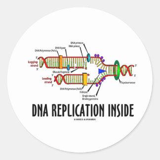 Interior de la réplica de la DNA (actitud de la Pegatina Redonda