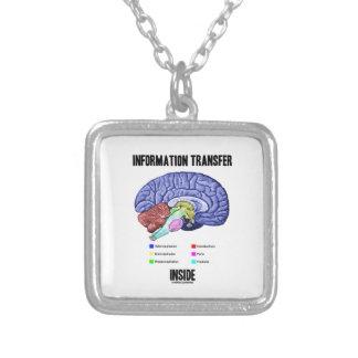 Interior de la transmisión informativa (anatomía d pendientes personalizados