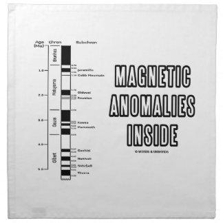 Interior de las anomalías magnéticas (polaridad servilleta de papel