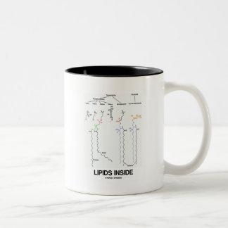 Interior de los lípidos (moléculas químicas) taza de café de dos colores