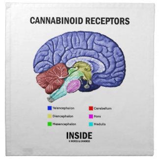 Interior de los receptores de Cannabinoid (anatomí Servilleta De Papel