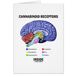 Interior de los receptores de Cannabinoid (anatomí Felicitacion
