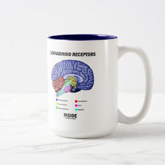 Interior de los receptores de Cannabinoid (anatomí Tazas De Café