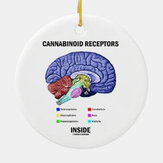 Interior de los receptores de Cannabinoid Adorno De Reyes