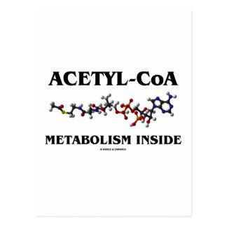 Interior del metabolismo Acetilo-CoA (molécula Postal