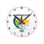 Interior del sistema de Endomembrane (biología Reloj Redondo Mediano