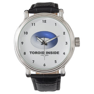 Interior del toroide (toro azul) reloj